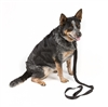 VTAC Ranger Buddy:  Dog Leash and Collar Combo